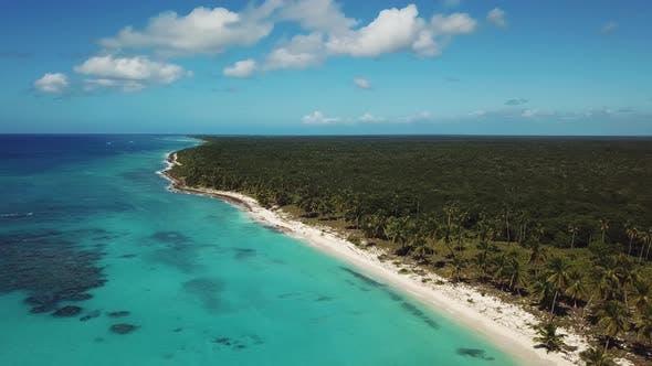 Thumbnail for Saona Island