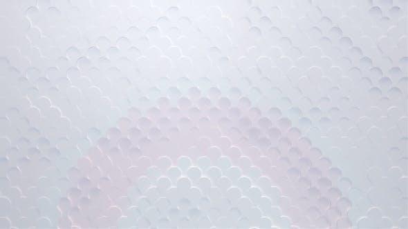 Elegant Soft Motion 17