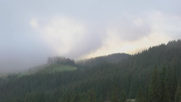 Thumbnail for Thick Fog and Clouds over Forested Mountains