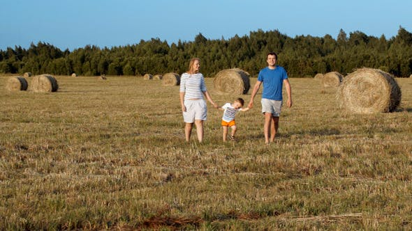 Thumbnail for Family Walking Holding Hands In The Field