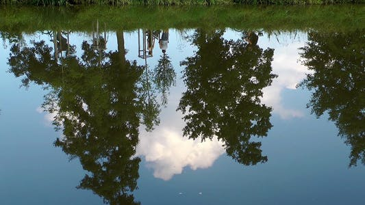 Thumbnail for Tree Reflection on the River