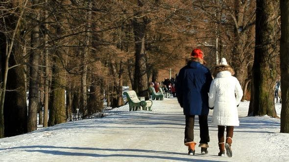 Thumbnail for Couple Walking In The Park In Winter