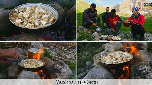 Cover Image for Climbers- Mushroom
