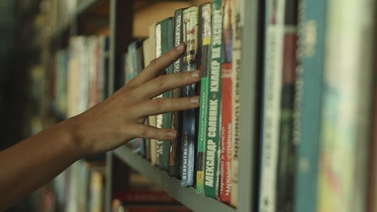 The Girl in The Library