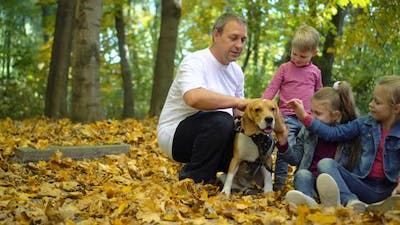 Happy family walks in the autumn Park with a Beagle dog. Children pet dog.