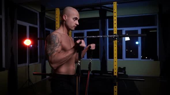 Shirtless Bodybuilder Training Biceps Muscles