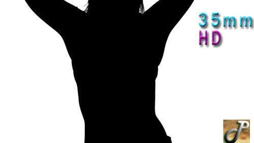 Silhouette Sexy Dancer With Skirt