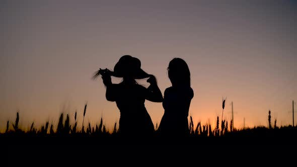 Thumbnail for Two Young Women in a Dress Stand in a Wheat Field on a Sunset Background. Black Silhouette of Girls