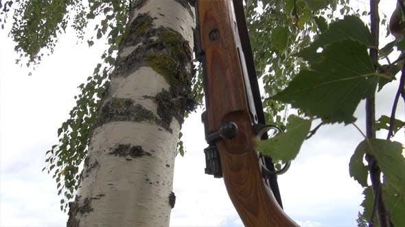 Mauser Rifle And Birsh