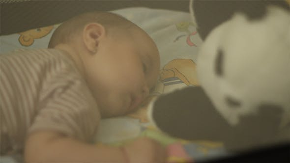 Cover Image for Peacefully Sleeping Baby