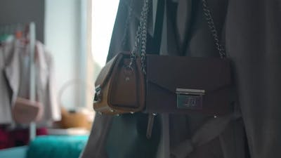 Fashionable Female Bag in Clothing Store