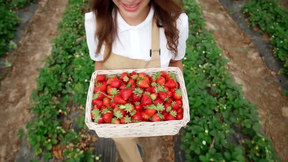 Young Woman Holding Basket Tasty Strawberries