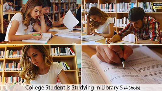 Thumbnail for College Students are Studying in Library