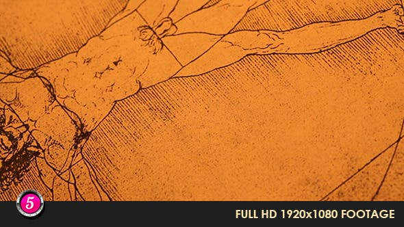 Thumbnail for Anatomy Drawings 22