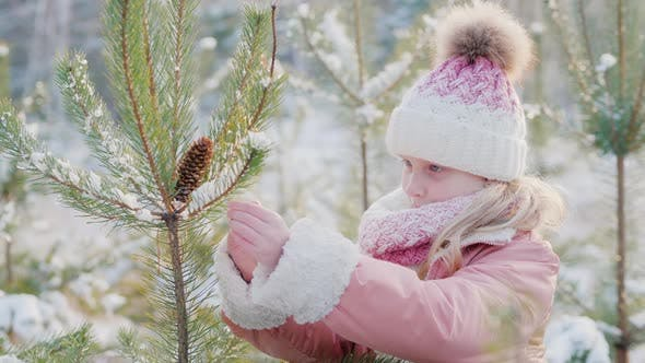 Thumbnail for A Little Girl Is Decorating a Christmas Tree in a Snowy Yard. Waiting for Christmas