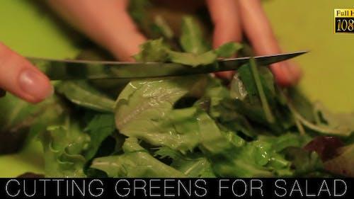 Cutting Fresh For Salad
