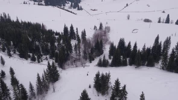 Thumbnail for Aerial view of a dog sled