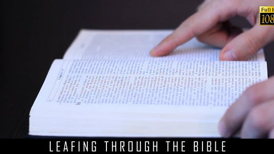 Cover Image for Leafing Through The Bible