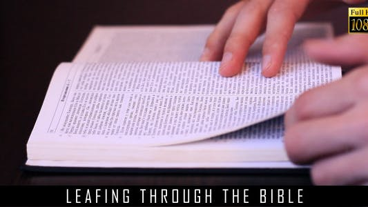 Thumbnail for Leafing Through The Bible 2
