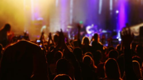 Hands and Heads of Spectators at a Concert