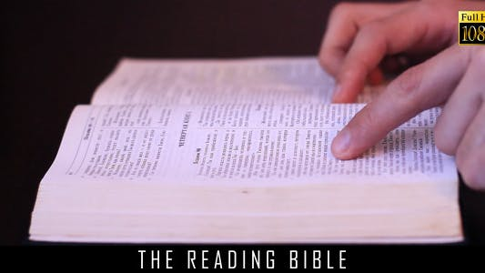 Thumbnail for The Reading Bible 3