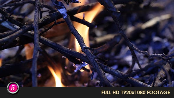 Thumbnail for Fire Burns Inflames 30