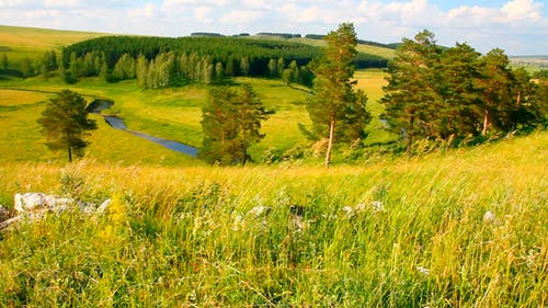 Landscape In Russia