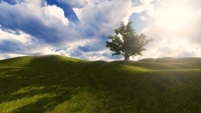 Tree On The Blistful Field