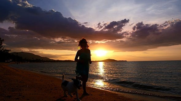 Thumbnail for Woman Running with a Dog at Sunset