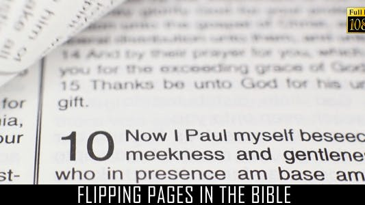 Cover Image for Flipping Pages In The Bible 2