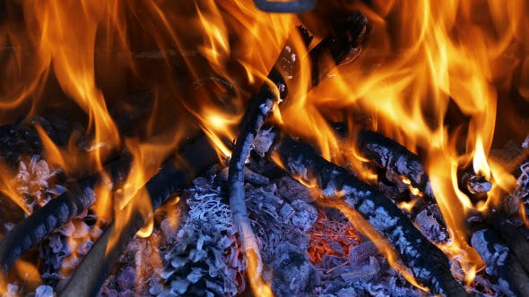 Thumbnail for Firewood Burning in the Fireplace 880