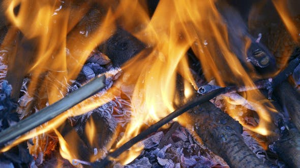 Thumbnail for Firewood Burning in the Fireplace 881