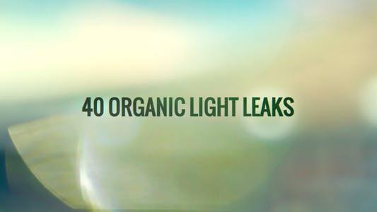 Thumbnail for 40 Organic Light Leaks