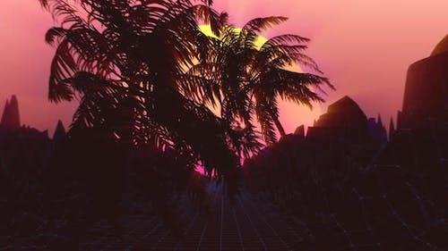 Palm Tree Sunset Transition 4K