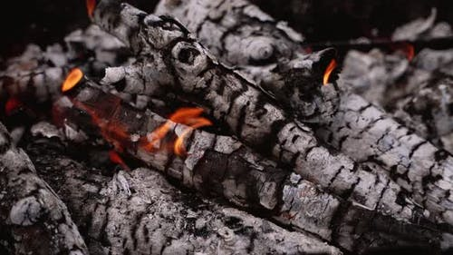 Ready embers of wood for barbecue
