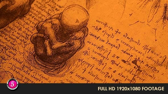 Thumbnail for Anatomy Drawings 227