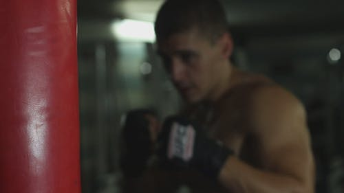 Boxer Boxen