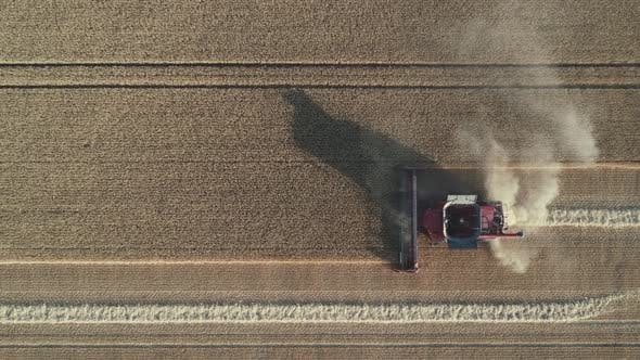 Thumbnail for Combine Harvester Aerial