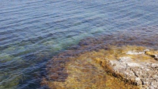 Thumbnail for Sea Coast