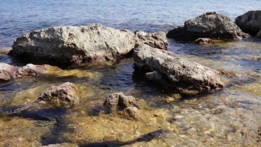 Thumbnail for Sea Coast 2