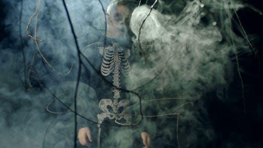 Thumbnail for Halloween Masquerade