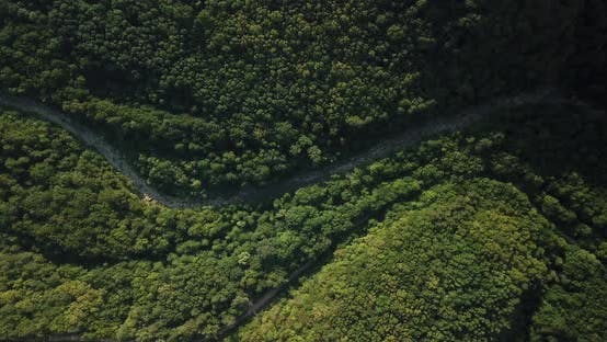 Thumbnail for Aerial Top View of Caucasian Mountain Forest, Texture of Forest View From Above.