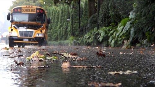 School Bus On Rainy Street