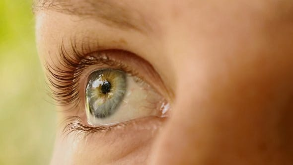 Thumbnail for Beautiful Female Eye