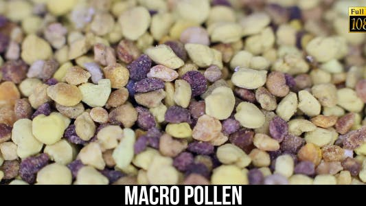 Thumbnail for Pollen 2