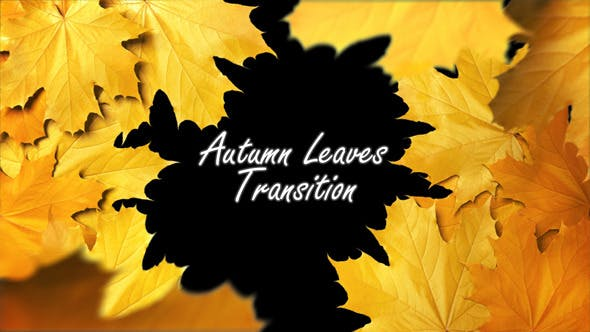 Thumbnail for Autumn Leaves Transition