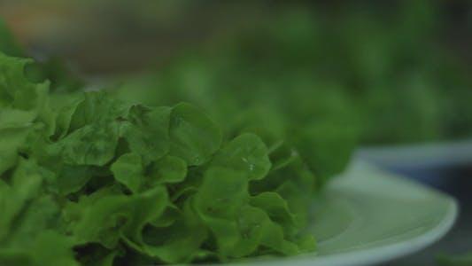 Thumbnail for Prepares a Salad