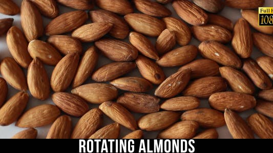 Thumbnail for Rotating Almonds