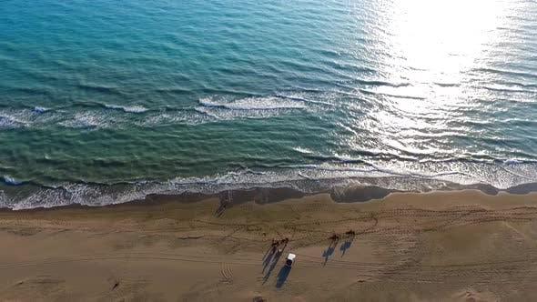 Meer und Reiten