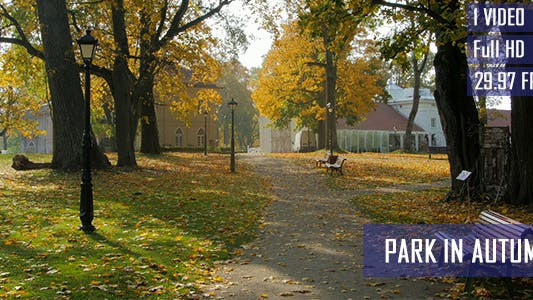 Thumbnail for Park In Autumn Landscape Background